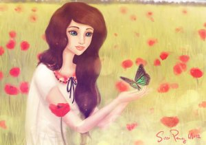 a dream of poppies