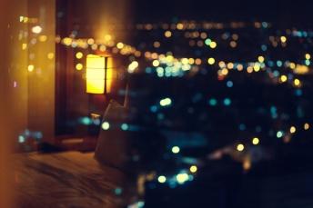 31013-Night-Lights